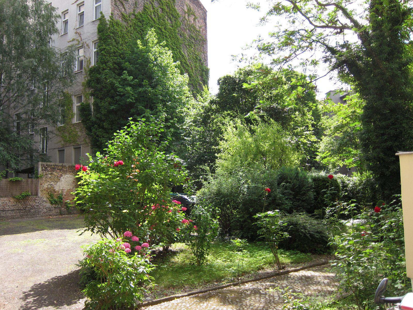 grüner Hinterhof