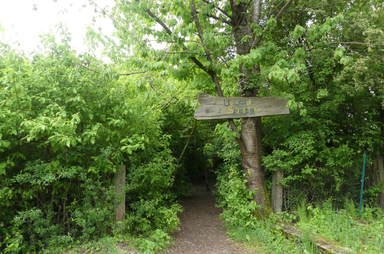 Urwaldspielplatz
